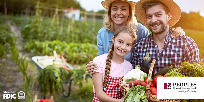 Can You Save on Groceries From Gardening? What You Should Know Before Digging In.